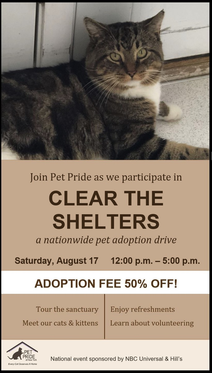 Pet Pride of New York is a no-kill, cats only, shelter